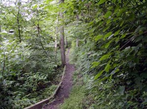 Stimulus money will be used to hire more than 2,000 young adults for the Young Hoosiers Conservation Corps program, which is aimed at improving parks and trails like the Charlestown State Park in Southern Indiana.